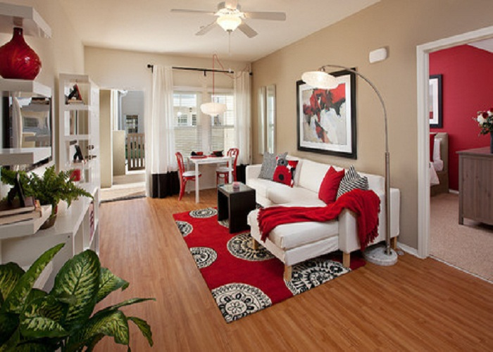 How would you improve a little room A very Usefull Tips in Australia 2019